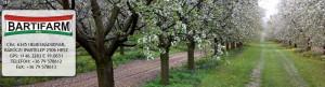 Bartifarm gyümölcsfák